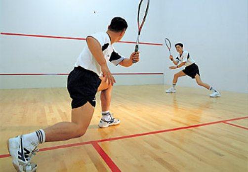 Image Gallery squash sport
