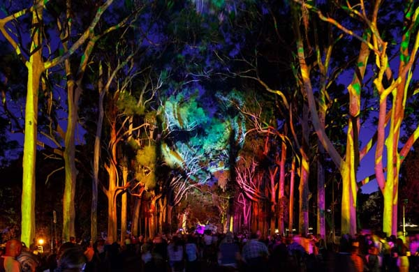 Study shows Perth festival has major impact on community spirit and arts initiatives