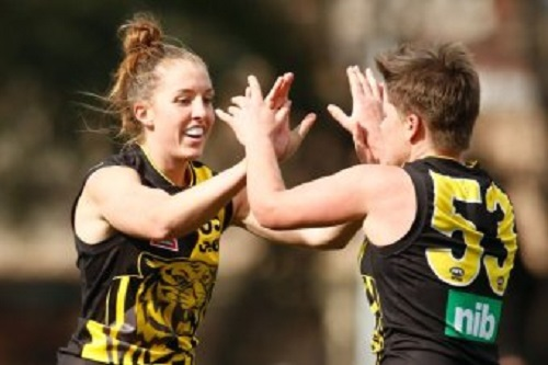 AFLW to expand to 14 teams in 2020 but warned 'hard work' needed for successful expansion