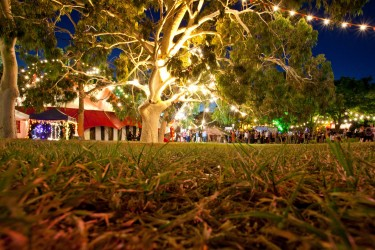 Record year for Adelaide's major festivals