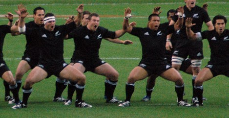 Study suggests All Blacks likely to keep on winning