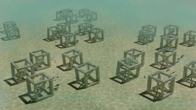 New artificial reef for Shoalhaven