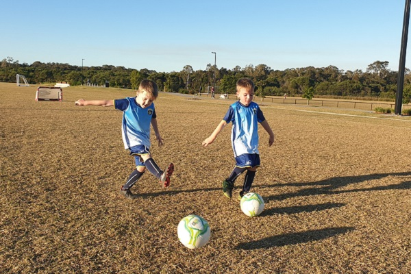 Sunshine Coast sports field maintenance funding program backs local clubs