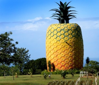 Work advances on new attractions and event space at Sunshine Coast's Big Pineapple