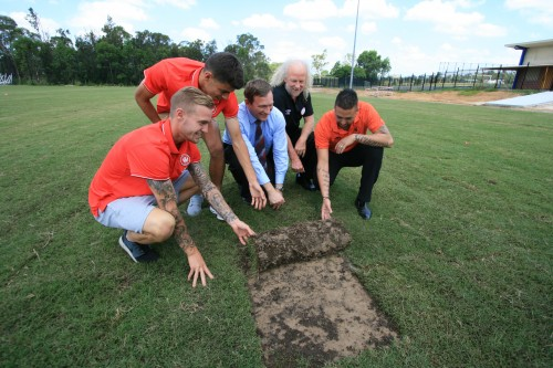 Turf laid on new fields at Blacktown Football Park