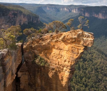 Botanists inspire new Blue Mountains attraction