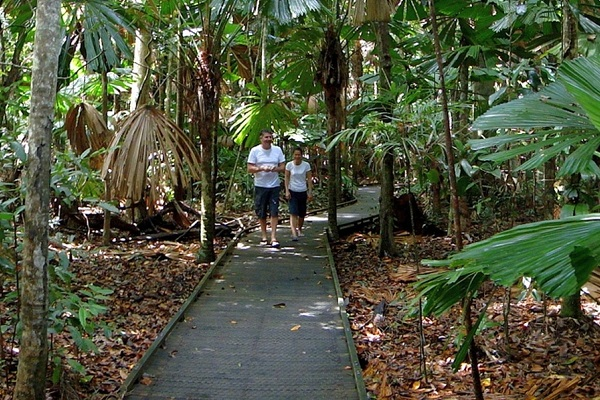 Popular Far North Queensland boardwalk reopens