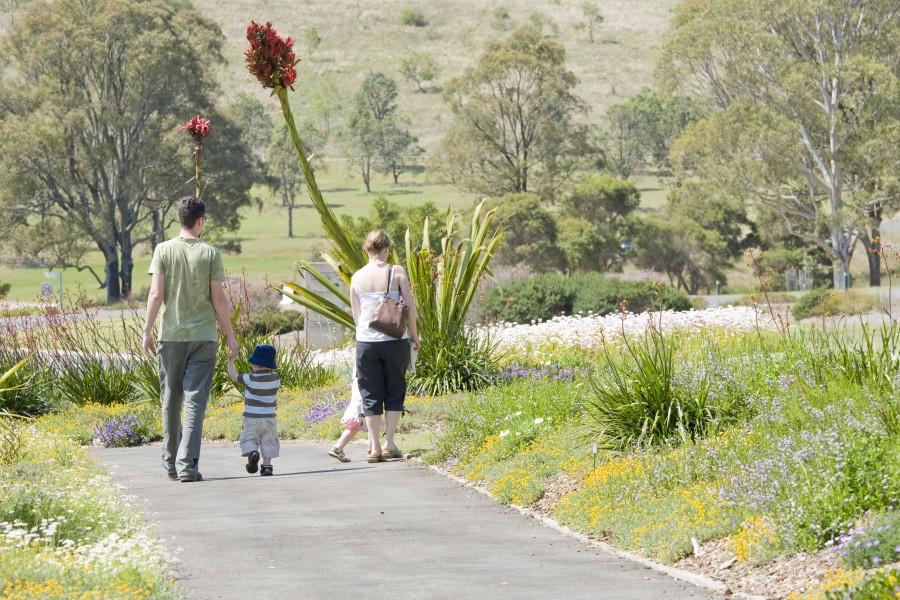 Visits to Sydney's green spaces increase during Coronavirus crisis