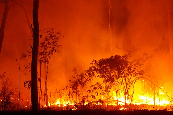 Bushfires have massive impact on Australian tourism industry