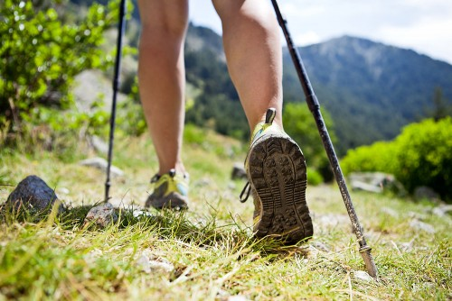 Massive growth in bushwalking as 'green exercise' and holiday activity