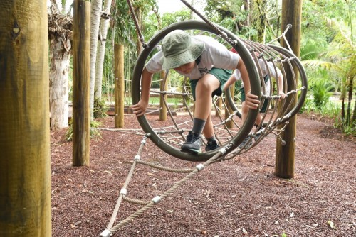 Cairns Nature Play recognised as Queensland's top playspace