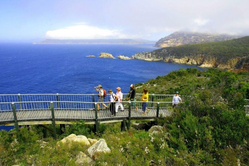Tasmanian National Parks infrastructure struggles to cope with visitor demand