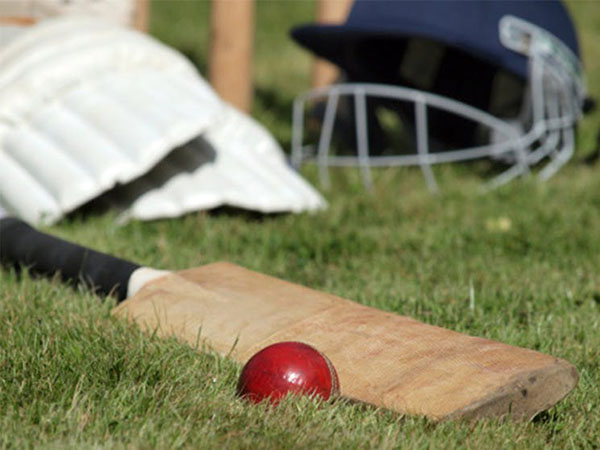 Goulburn Mulwaree Council welcomes representative cricket returning to regional NSW