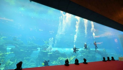 Chengdu Cube Oceanarium recognised with two Guinness World Records