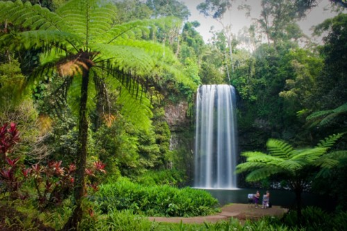 Ecotourism value of Queensland's national parks flagged in Annual Report
