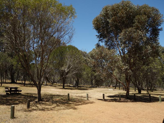 Public feedback sought on new parks and reserves management plan for Western Australia