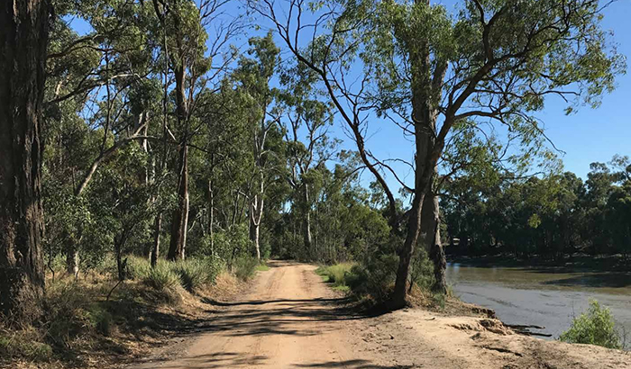 Plans adopted to redevelop Echuca's Victoria Park and Scenic Drive into sport and recreational precinct