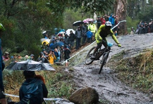 Expansion of mountain bike trail network divides Tasmanian community