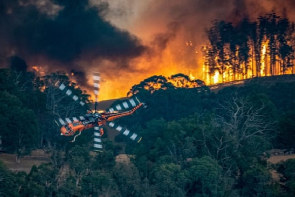 Bushfires predicted to have massive financial impact on Australian tourism industry
