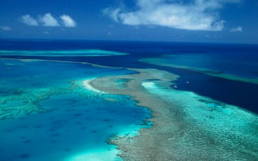 Great Barrier Reef to be spared UNESCO 'in danger' listing