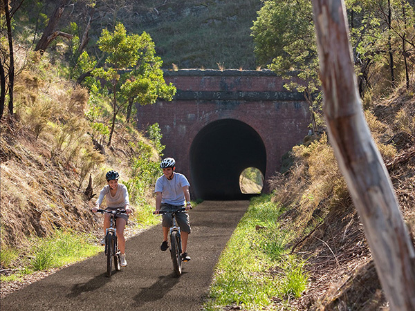 Great Victorian Rail Trail strategy supported by three Victorian councils