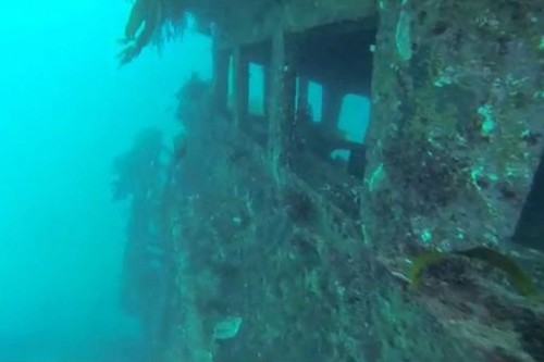 Artificial Dive Reef for Gold Coast?
