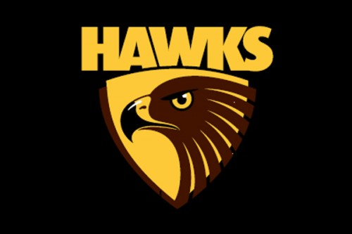 Waypoint to assist Hawthorn FC at Waverley Park