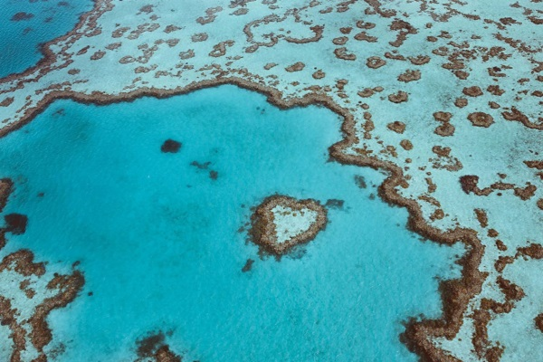 Great Barrier Reef's Heart Island opened up for helicopter excursions