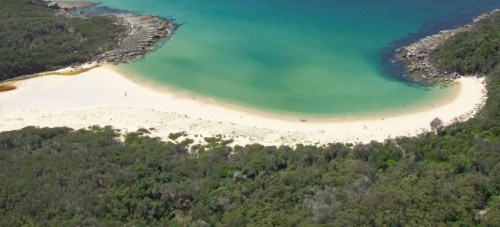Fears for NSW marine life as environmental protection scrapped