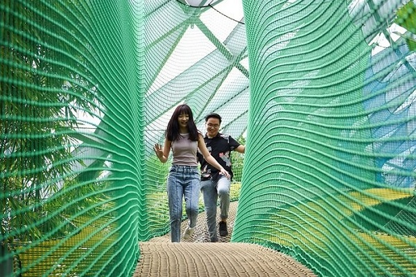 Jewel Changi Airport opens new attractions and Changi Experience Studio