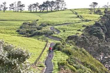 Auckland regional parks to thrive under Long-term plan