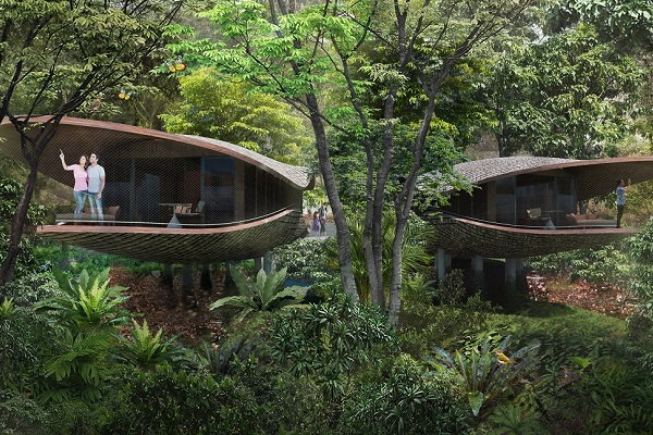 Designs revealed for treetop accommodation at nature-based Singapore Zoo resort