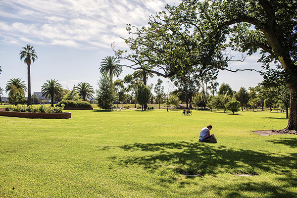 City of Melbourne to invest more than $19.1 million in parks, waste and water