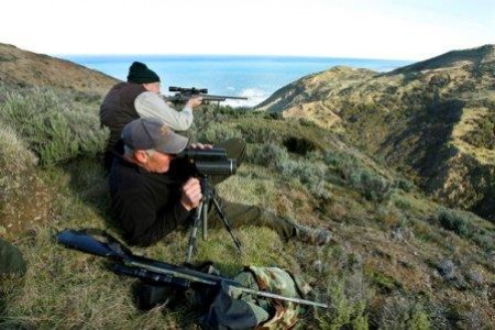New Zealand recreation groups support Government moves for firearms reform