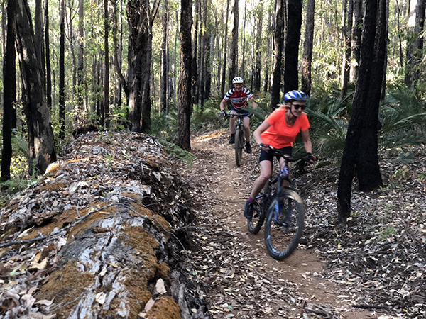 Dwellingup Adventure Trails project sees mountain bike network open in Lane Poole Reserve