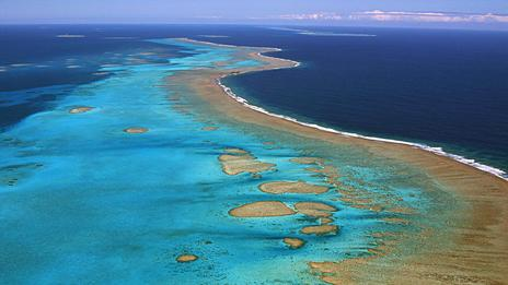 New Caledonia creates world's largest nature reserve