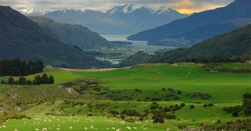 Local Government New Zealand welcomes plan for New Zealand tourism