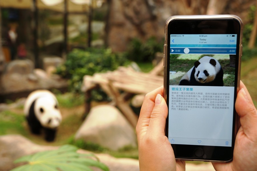 Ocean Park launches free Wi-Fi and new Mobile App to attract visitors