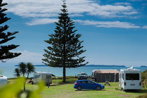 Tasman Tourism NZ unveils plans to upgrade New Zealand's holiday park sector