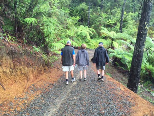 Rayonier Matariki Forests receives award for supporting the Pauanui Tairua Trail