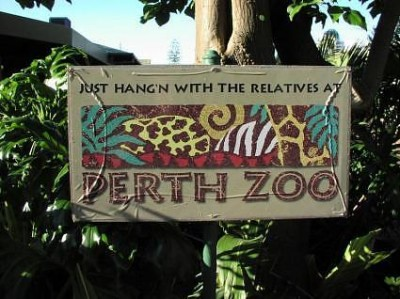 Perth Zoo loses breeding recommendations to open range zoos