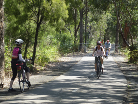 NSW Government to back rail trails