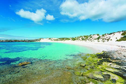 Rottnest Island celebrates a century of tourism