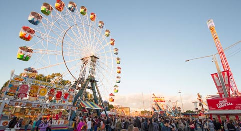 Comprehensive risk and safety assessments undertaken in advance of 2015 Sydney Royal Easter Show