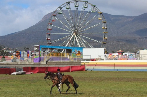 Royal Hobart Show organisers look at dramatic site transformation