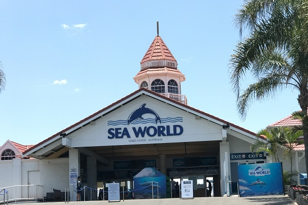 Sea World staff member to face Court over allegations of $19,000 theft