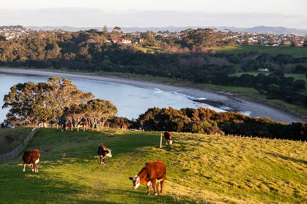 World Urban Parks awards Auckland's Shakespear Regional Park