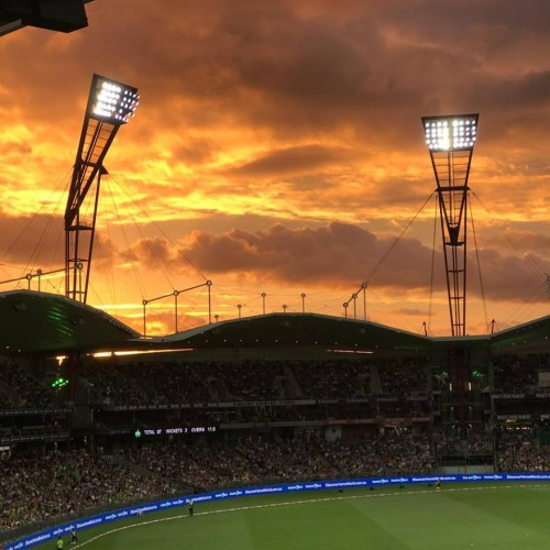 Crowds flock to Big Bash League