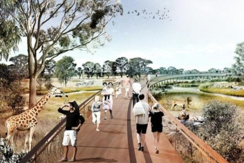 Cage free Western Sydney Zoo to bring visitors 'face to face' with animals
