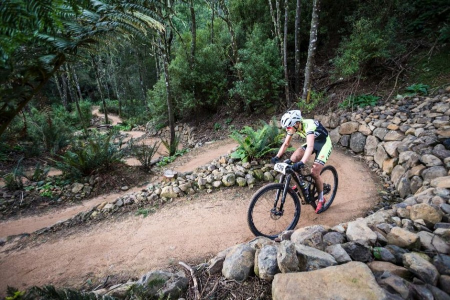 Tasmanian councils aim to expand mountain bike tourism